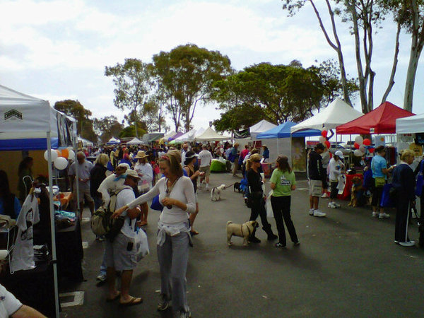 serving it up, festival, california, tents, food